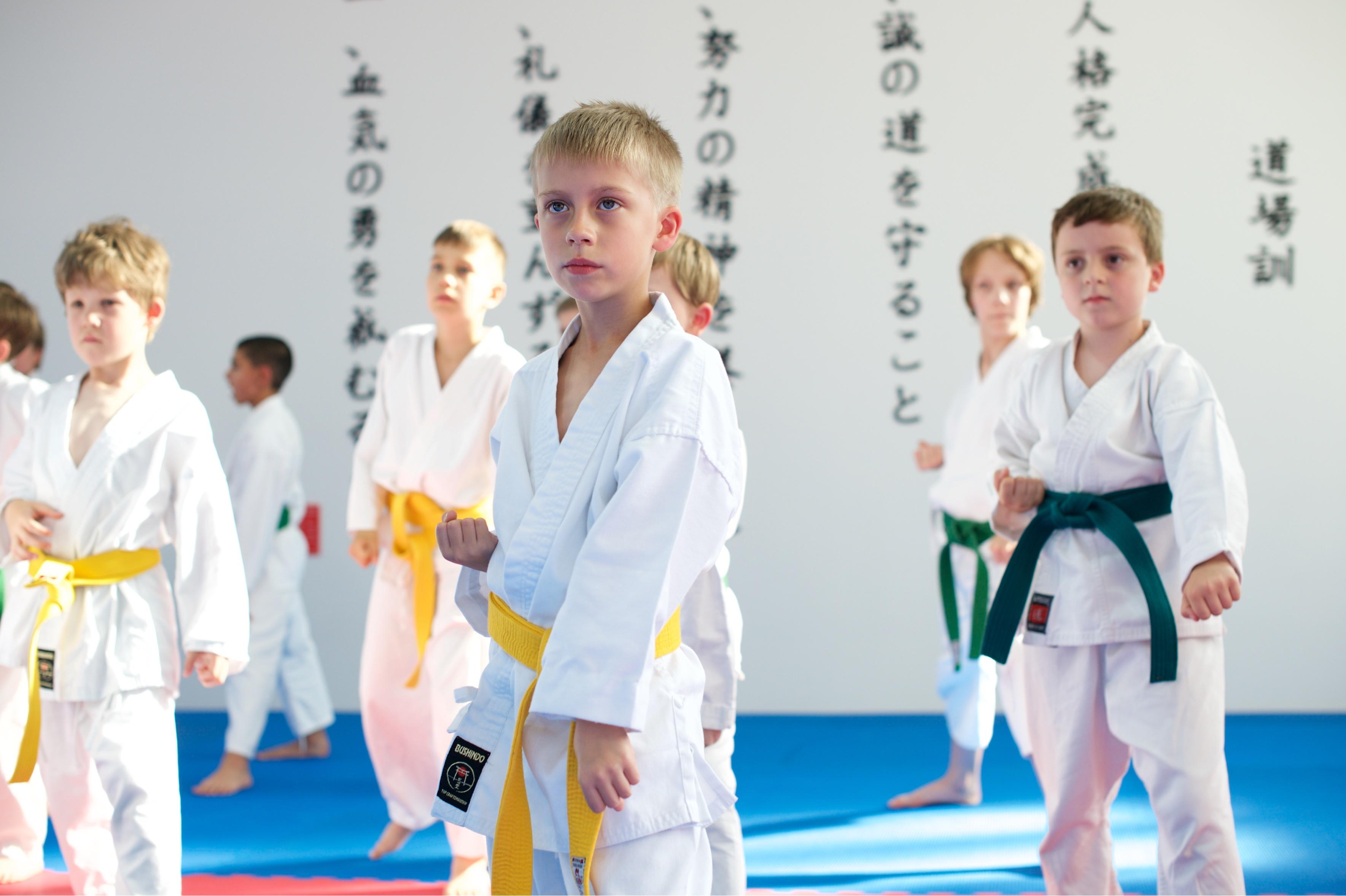Vaše děti na karate